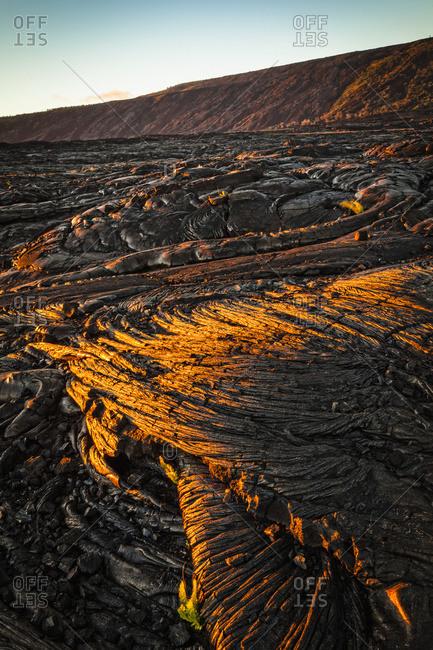 Setting sun light on lava field, Hawaii Volcanoes National Park, Island of Hawaii, Hawaii, United States of America