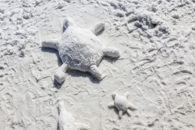 Sea turtles sculpted in snow