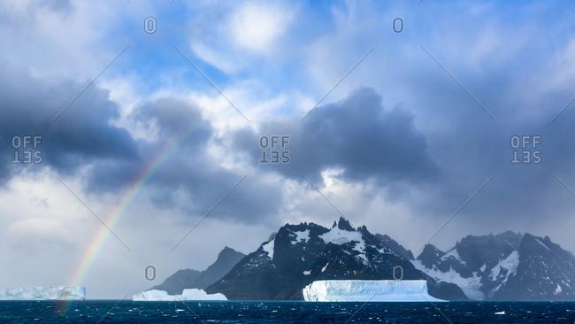Icebergs, approach to Drygalski Fjord, South Georgia Island