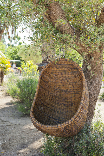 Outdoor nest chair hanging from a tree