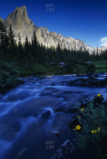 Creek in the woods near El Capitan peak in the Sawtooth National Recreation Area, Idaho