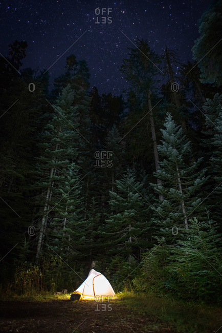 Illuminated tent in a forest