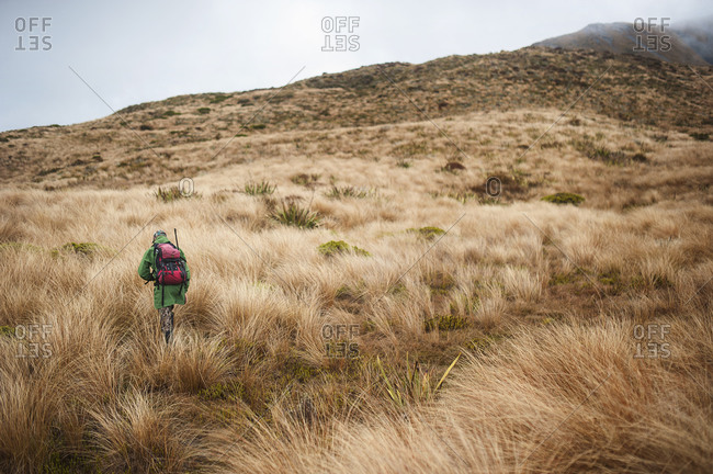 Man carrying rifle in mountains, Nelson Lakes, New Zealand