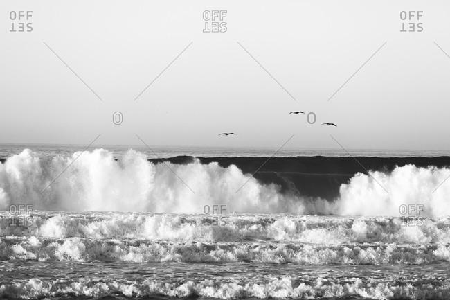 Hurricane swell creating large surf on California coastline