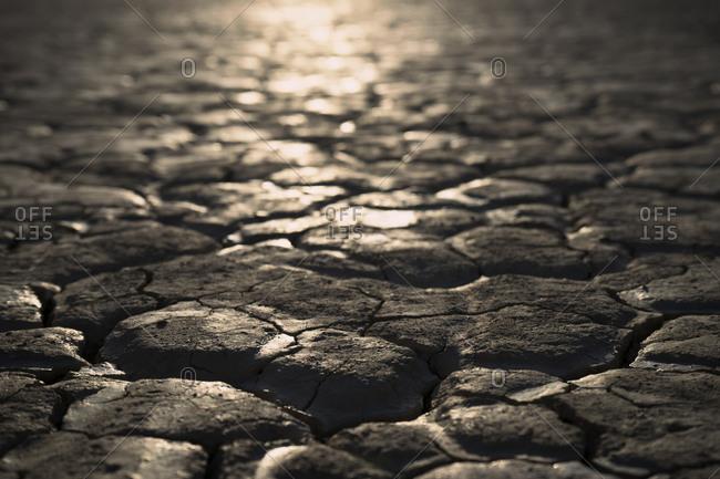 Sunlight reflected on a cracked desert sand