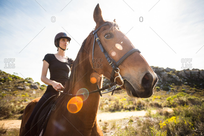 Young happy woman with her horse in the countryside