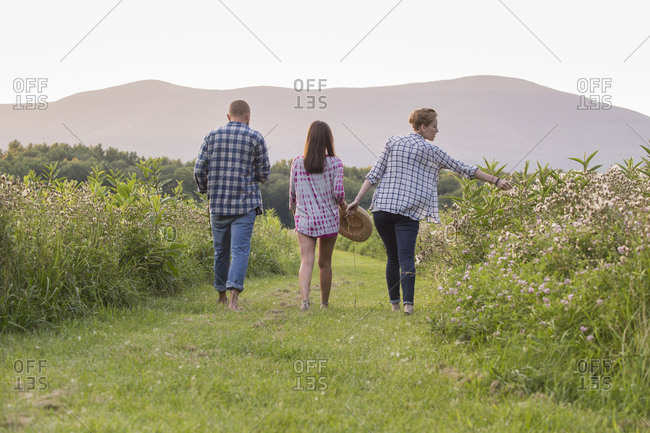 Rear view of two women and a man walking along a mown path in fields of wildflowers and grass
