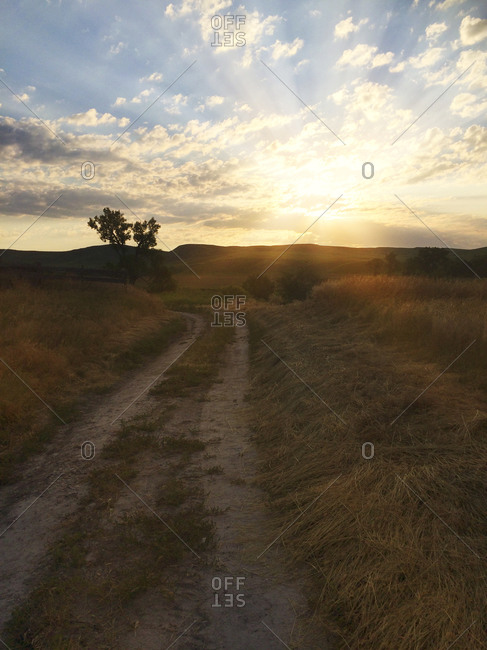 Dirt road in the countryside at sunset