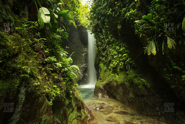 Waterfall and stream in a Costa Rican rainforest