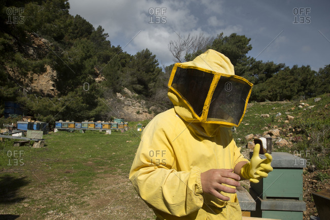 Beekeeper in a yellow suit tending hives