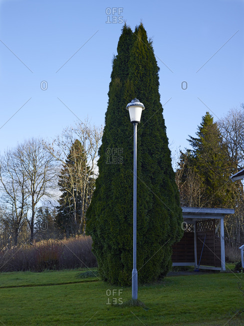 Lamppost on lawn