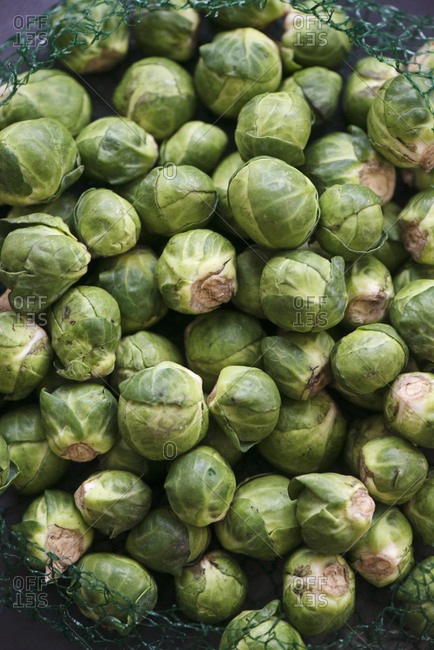 Overhead view of brussel sprouts