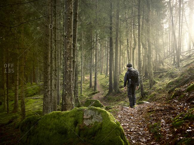 Man walking in forest