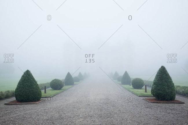 Graveled footpath in garden on foggy day