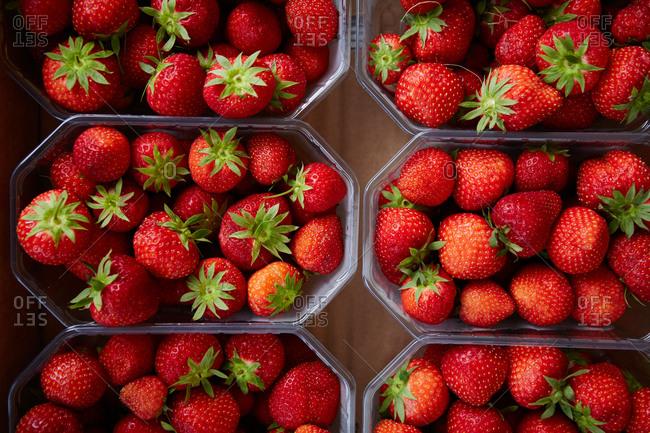 Strawberries at a farmer's market