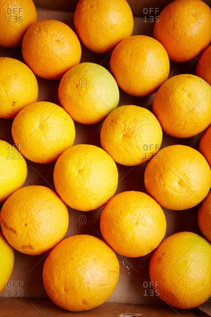 Oranges at a farmer's market