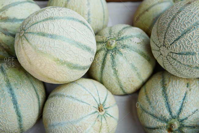 Melons at a farmer's market