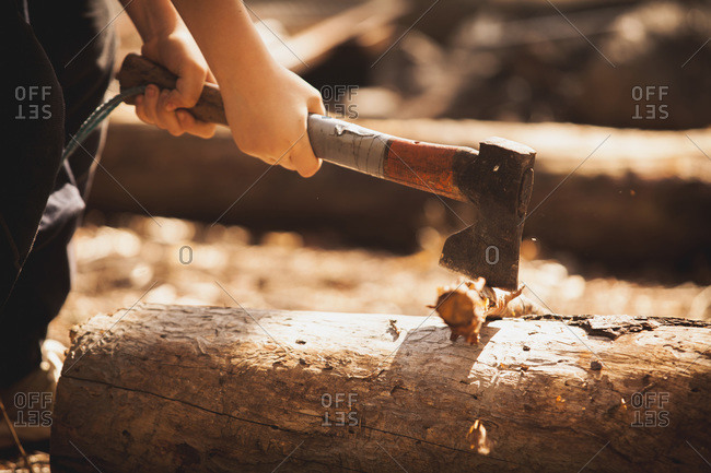 Low section of boy cutting firewood with axe in forest