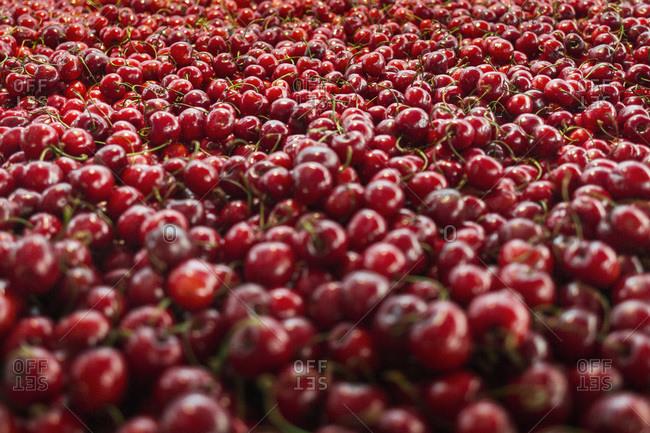 Full frame shot of fresh cherries