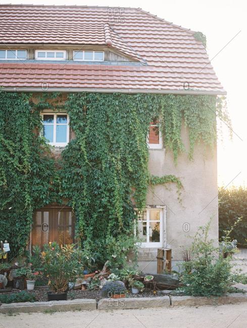 Quaint vine-covered European cottage with terra cotta tile roof