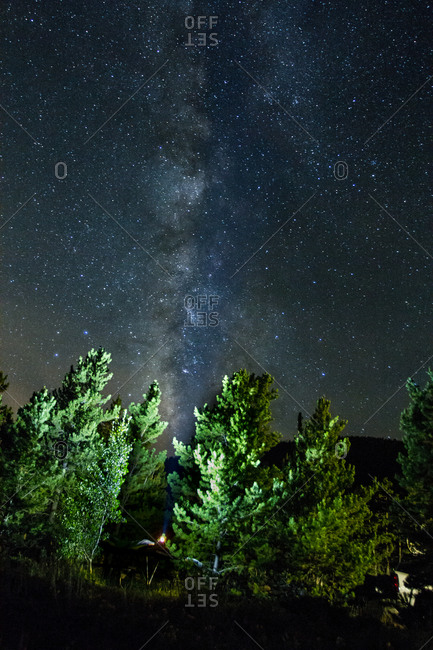 Starry sky over forest campsite
