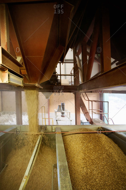 A large open barn or storage unit, with open chutes pouring biomass fuel pellets into a hopper biomass fuel producer
