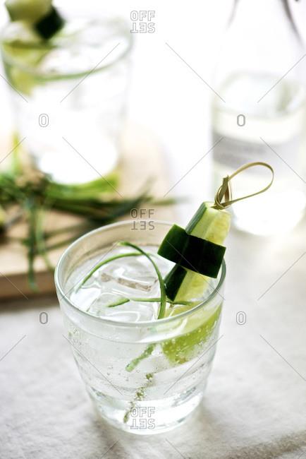 Cucumber vodka cocktail with garnish