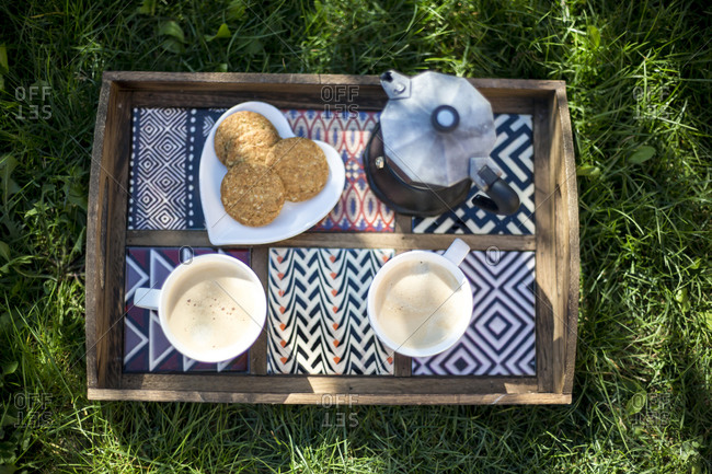 Moka pot, two cups of coffee and biscuits on wooden tray on a meadow