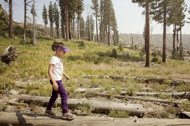 Girl hiking in a wilderness area recovering from wildfire