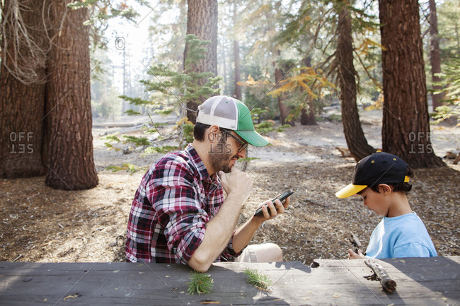Father with son looking at smartphone in a picnic area
