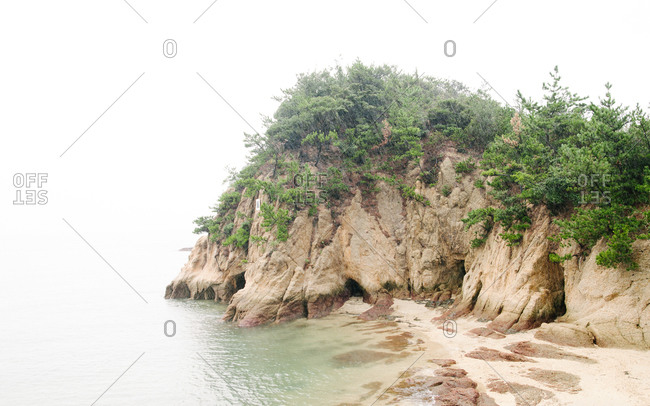 Small verdant cliff along sea shore