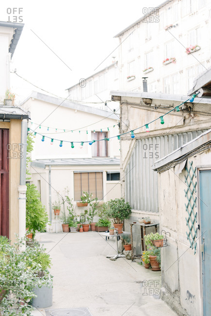 Urban backyard space with plants and string of lights