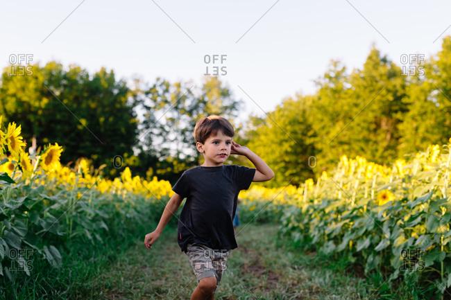 A boy runs through a field of sunflowers