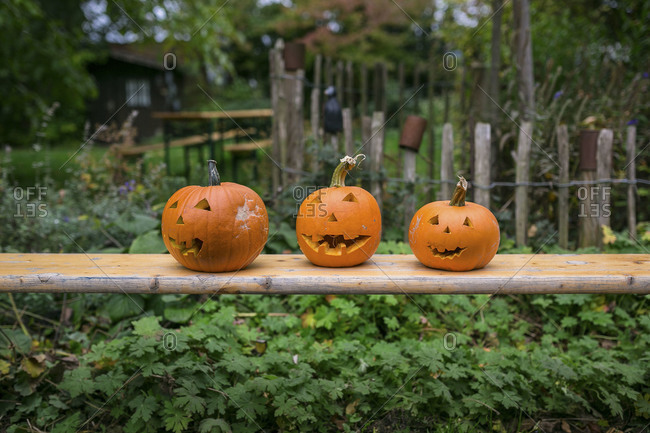 Three carved pumpkins on a bench