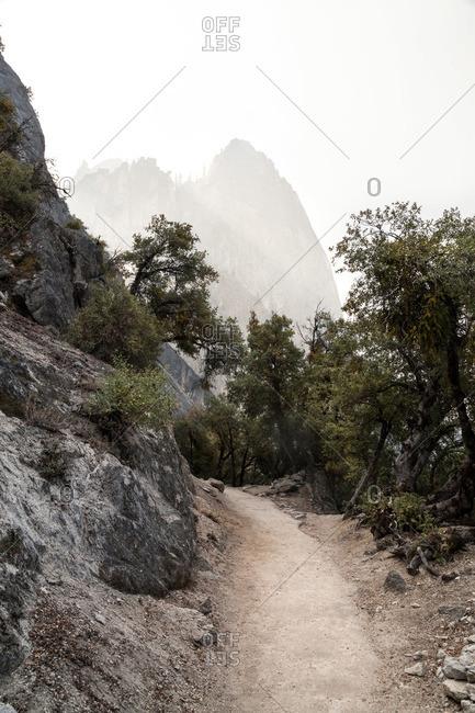 Nature trail on a foggy mountainside