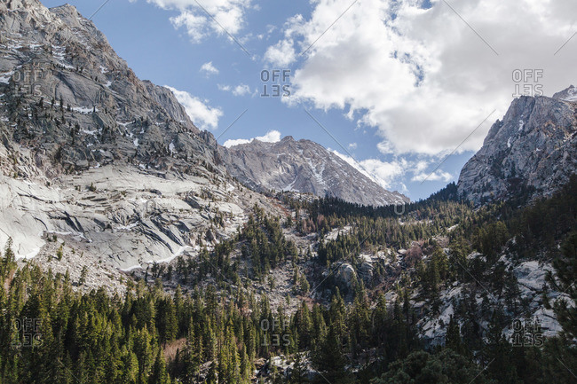 Trees growing in a valley between tall rocky mountains