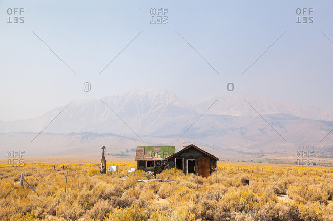 Abandoned house on a grassy yellow plain