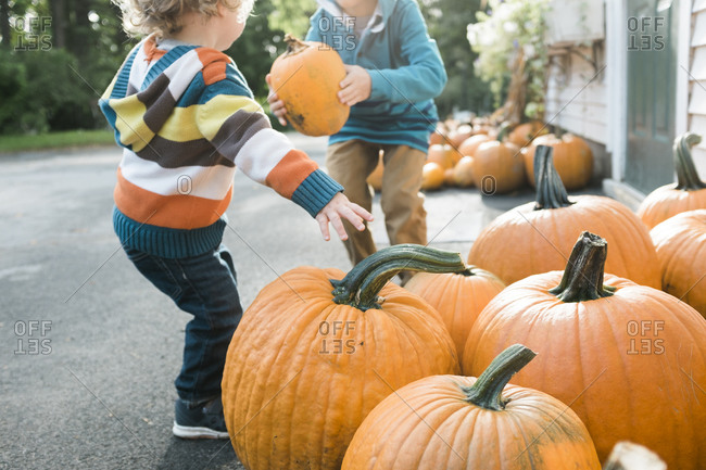 Two boys pick put pumpkins