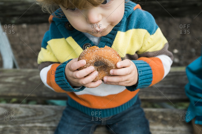 A boy in an orange and yellow striped sweater eats a sugared donut