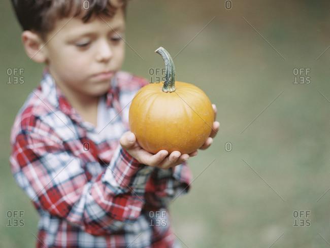 A little boy holds a small pumpkin