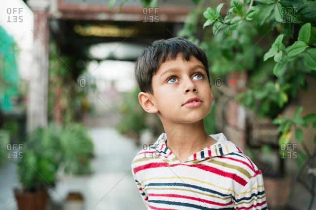 Beautiful young boy gazing upward outside on patio