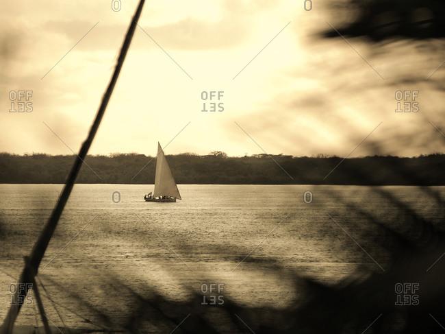 Dhow sailing boat on Lamu island in Kenya