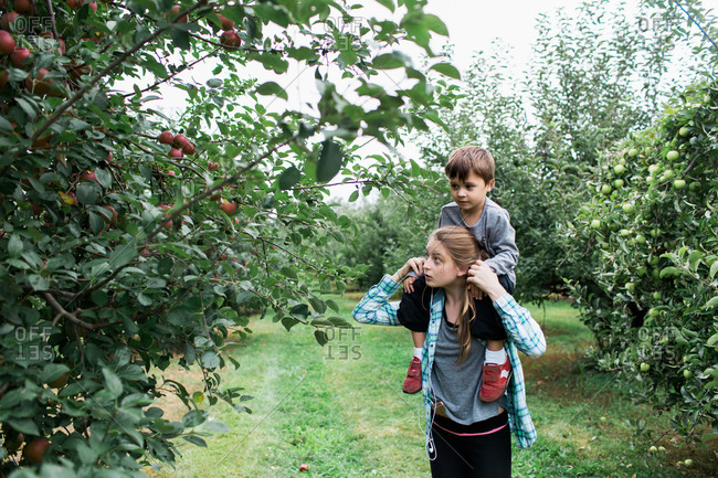 A sister carries her brother on her shoulders in an apple orchard