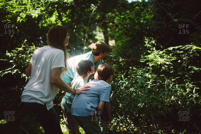 Family looking into forest
