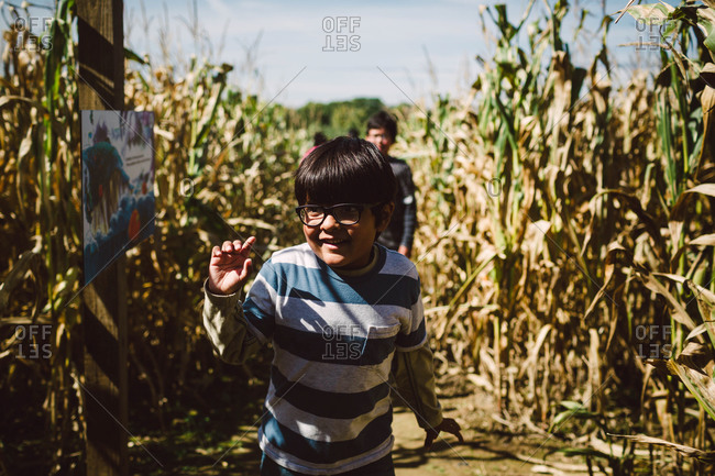 Young boys in cornfield maze