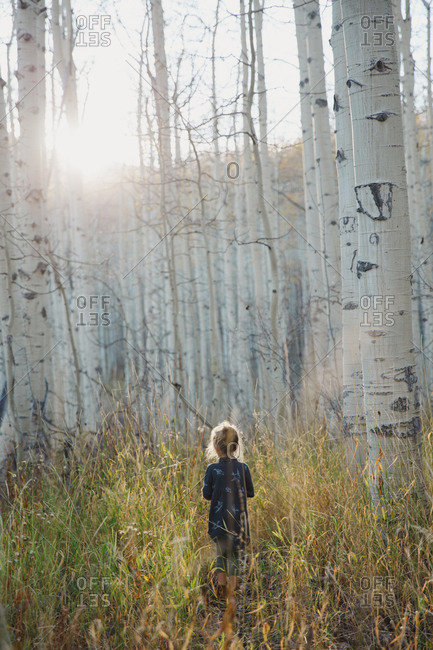 Young girl standing in birch forest