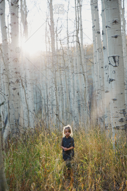 Young girl standing in a birch forest