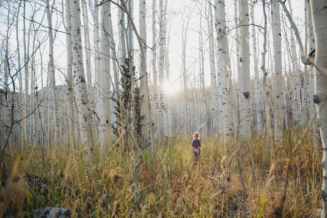 Girl walking in a birch forest