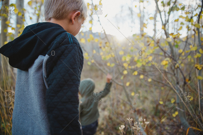Two kids exploring woodland in autumn