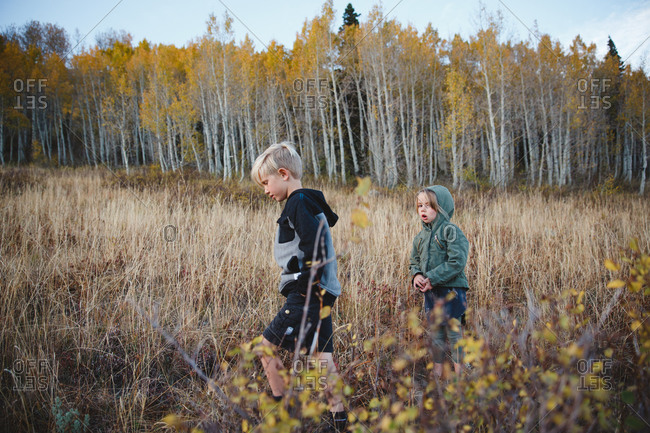 Boy and girl walking among weeds in rural woodlands